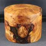 box Tasmanian myrtle burl